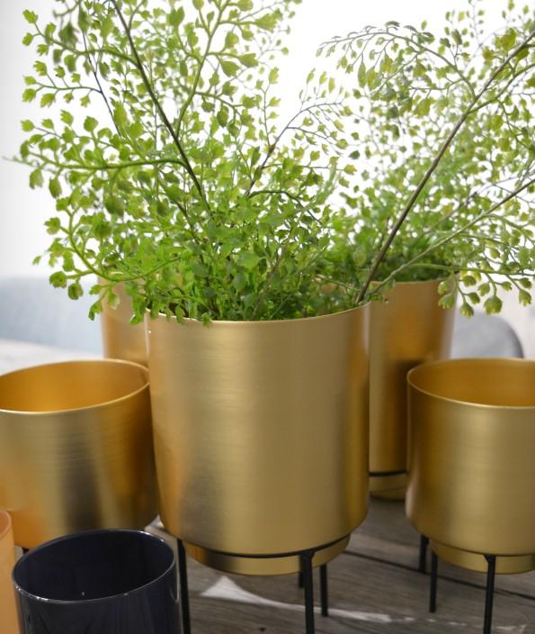 Guus pot voor plant