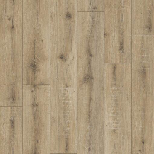 brio oak 247