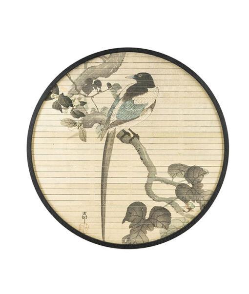 morita bird1