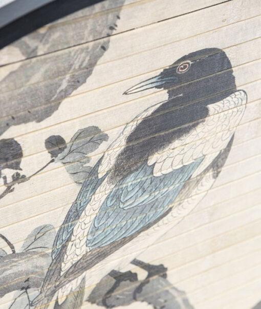 morita bird2