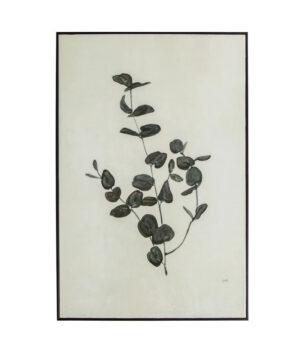 Yaro eucalyptus poster1
