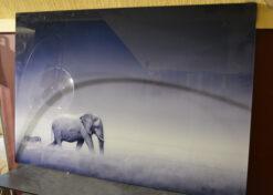 alu art olifant en zebra 2