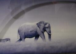 alu art olifant en zebra