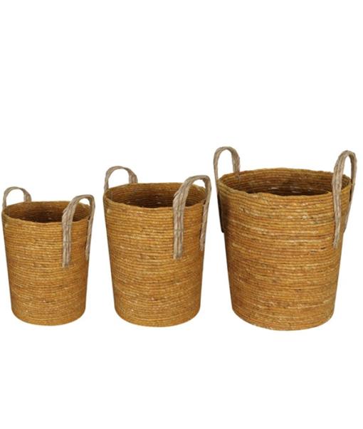 Basket Maize