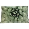 Cushion Green 3x60x40cm