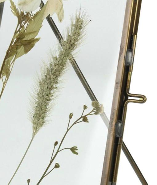 Frame Dried Flower Groot 2