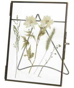 Frame Dried Flower Groot