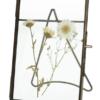 Frame Dried Flower Klein
