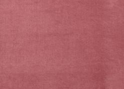 2 5 Zits Rodeo Velvet Pink 1