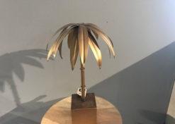 Palm Goed
