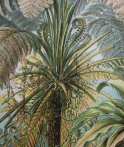 Botanical Green 1